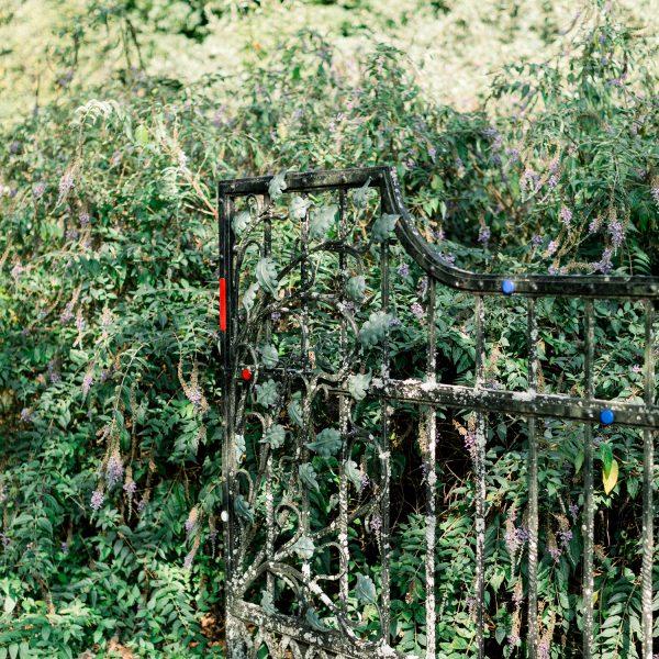 UGA-State-Botanical-Garden-Wedding-Planner-15